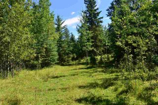 Main Photo: RR 15 Highway 633 (Twp 542): Rural Lac Ste. Anne County Rural Land/Vacant Lot for sale : MLS®# E4077339