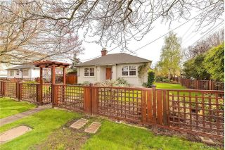 Main Photo: 1559 Bay Street in VICTORIA: Vi Fernwood Single Family Detached for sale (Victoria)  : MLS®# 390319