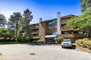 Main Photo: 167 7293 MOFFATT Road in Richmond: Brighouse South Condo for sale : MLS®# R2270044