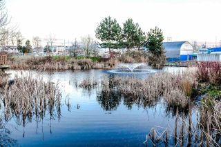"Main Photo: 328 5500 ANDREWS Road in Richmond: Steveston South Condo for sale in ""SouthWater"" : MLS®# R2289724"