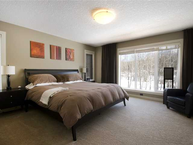Photo 10: 11 Spring Willow Way SW in CALGARY: Springbank Hill Residential Detached Single Family for sale (Calgary)  : MLS® # C3471244