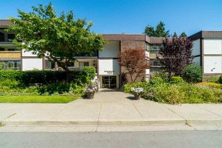 "Main Photo: 108 1520 VIDAL Street: White Rock Condo for sale in ""The Sandhurst"" (South Surrey White Rock)  : MLS®# R2290309"