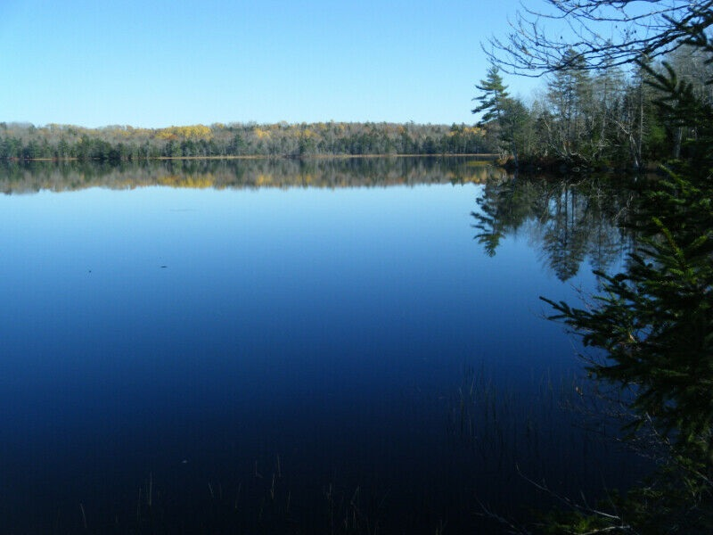 FEATURED LISTING: Lot 14 Black Duck Lake Road East Dalhousie