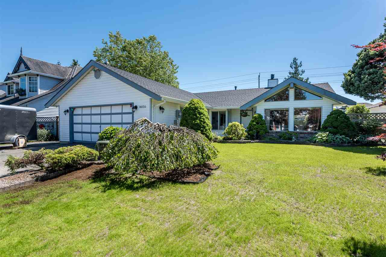 Main Photo: 16130 95A Avenue in Surrey: Fleetwood Tynehead House for sale : MLS®# R2181782