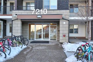 Main Photo: 412 7210 80 Avenue NE in Calgary: Saddle Ridge Condo for sale : MLS® # C4160901