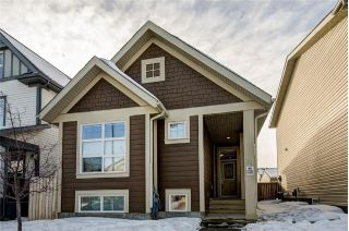 Main Photo: 69 WALDEN Gardens SE in Calgary: Walden House for sale : MLS® # C4162479
