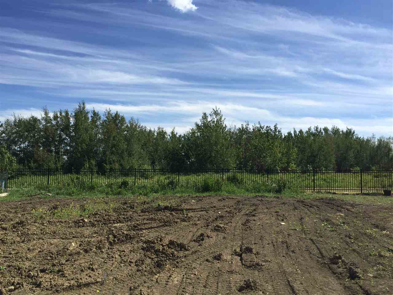 Main Photo: 7179 MAY Crescent in Edmonton: Zone 14 Vacant Lot for sale : MLS®# E4112222