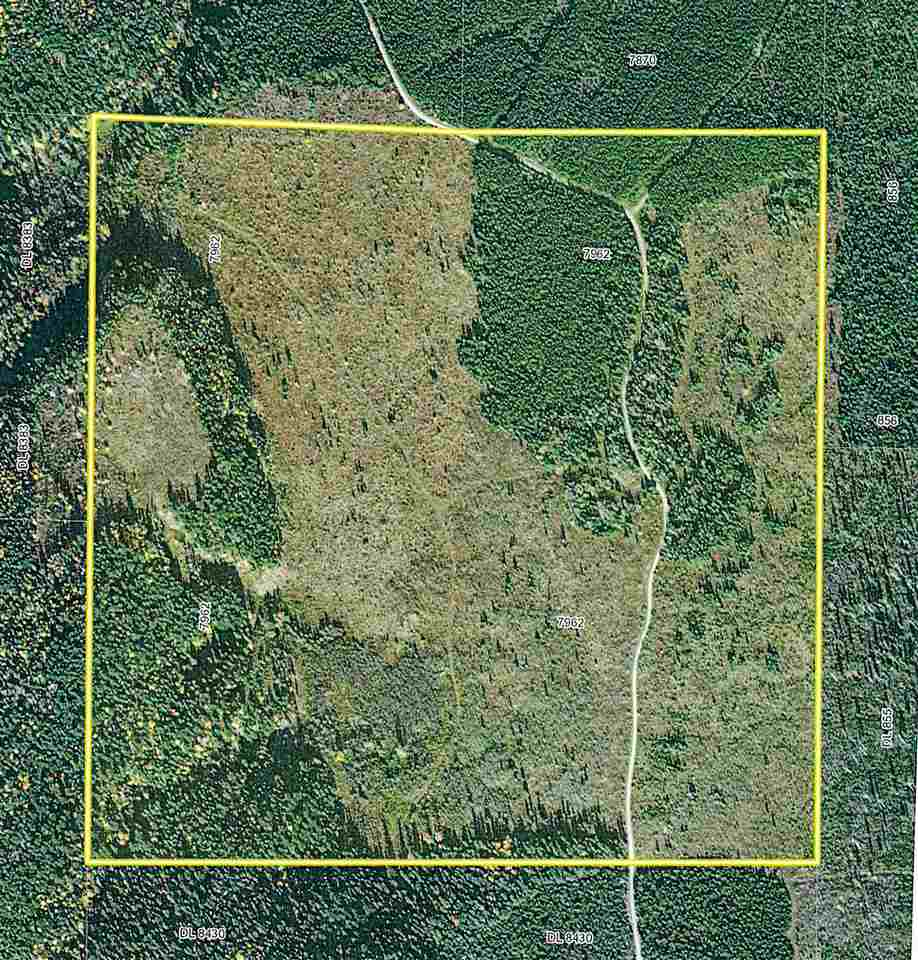 FEATURED LISTING: DL - 7962 REID LAKE Road Reid Lake