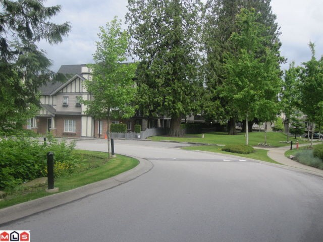 Main Photo: 50 20875 80th Avenue in Langley: Willoughby Heights Condo for sale : MLS®# F1220454