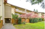 Main Photo: 110 14945 100 AVENUE in Surrey: Guildford Condo for sale (North Surrey)  : MLS®# R2254516