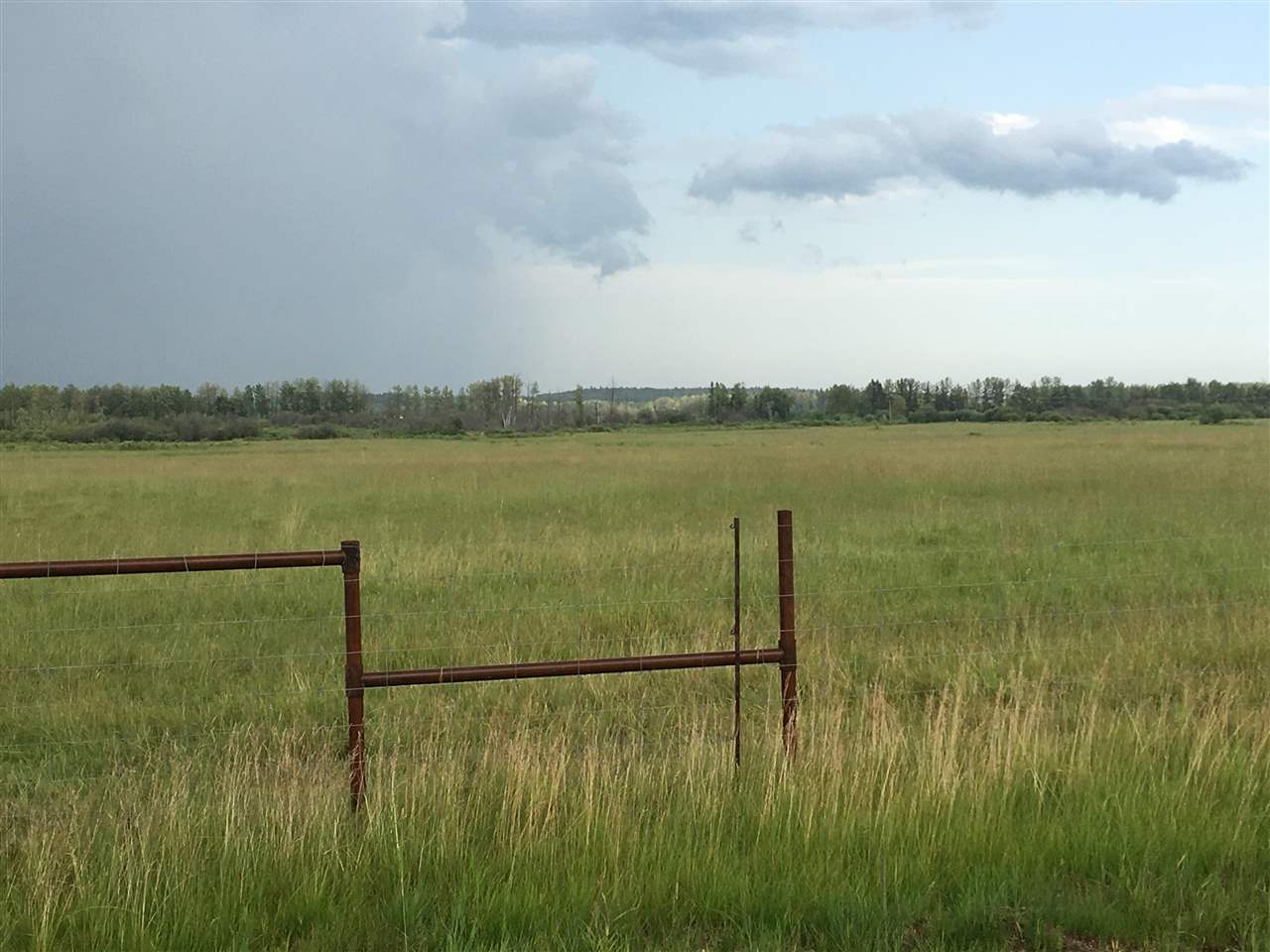 FEATURED LISTING: Range Road 81 Rural Brazeau County