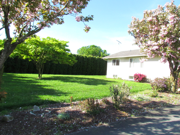 Main Photo: 6415 Hargitt Street in Abbotsford: House for rent