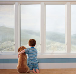 New casement windows reduce noise from outside the home like barking dogs, loud music, and traffic.