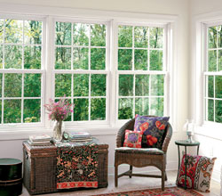 Double Hung Replacement Windows Traditional Colonial