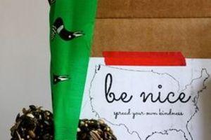 Be Nice Box