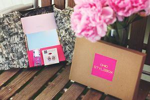 Chic StyleBox