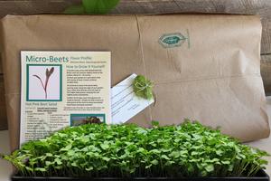 GardenBox