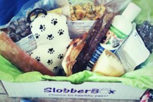 SlobberBox