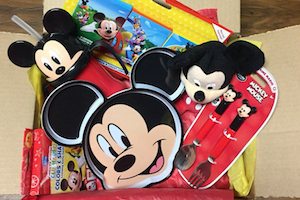 Disney Subscription Box