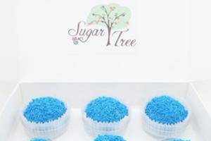Sweet Treats Sweets Cake Balls Box
