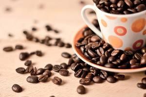 Black Moon Coffee