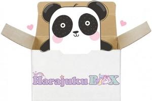 Kawaii Panda Harajuku Box