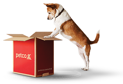 Listed below are shipping details for Petco, including the geographies shipped to, the service level offered, and the prices charged. Note that Media Rates are based on shipping a single item. Purchasing multiple media items results in multiple shipping charges.
