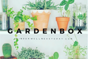 GardenBox by Kinderwellness