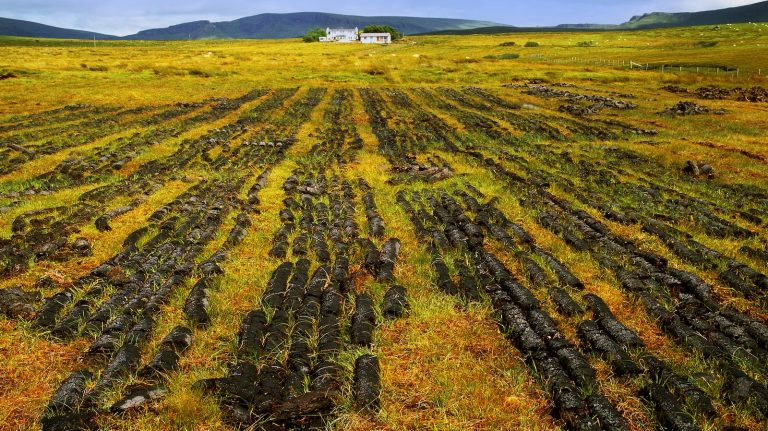 peat laid out to dry in a scottish landscape