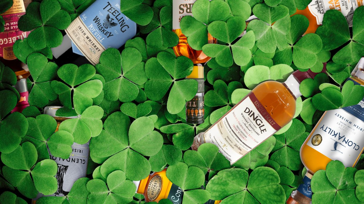 Several bottles of Irish Whiskey are dispersed among shamrocks.