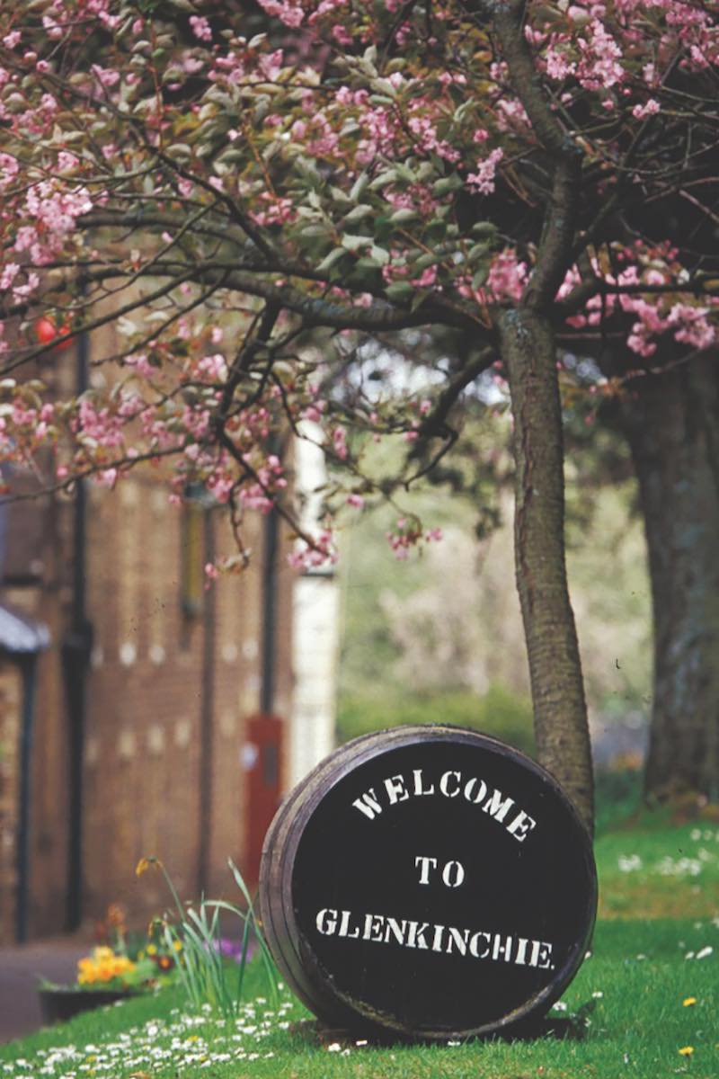 a cask under the cherry blossoms at glenkinchie distillery in the lowlands of scotland