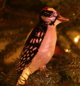 IMG_5966 woodpecker on Christmas tree small crop