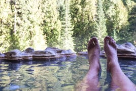 relaxing hot mineral pools surrounded by forest
