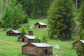 Garent ghost town wooden cabins on grassy hill surrounded by trees