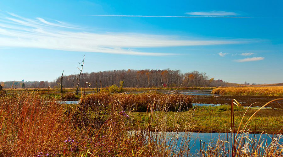Take Horicon Marsh Boat Tours Before they Close For the 2019 Season