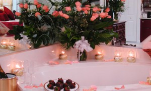 Island Cottage INN PHOTO - Romance and SALMON Roses 450p wide