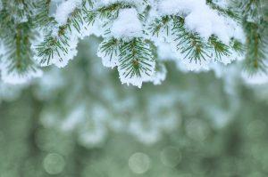 Winter Activities to Enjoy in Galena, Illinois
