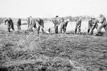 About_hist_CCC-prairie-planting-1935-348x232