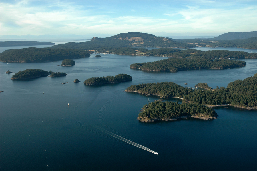 over wasp islands orcas