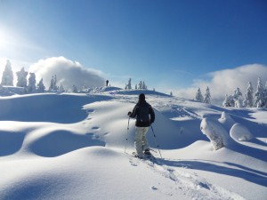 Winter Activities Sequim