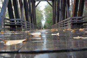 Railroad Bridge Park Sequim