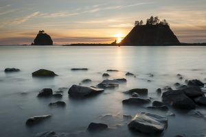 Sequim is the Gateway to the Olympic Peninsula