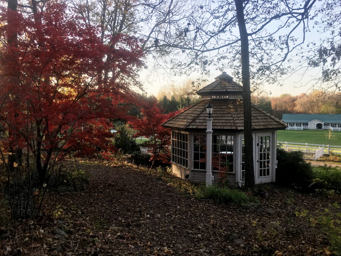 gazebo-in-fall3-2