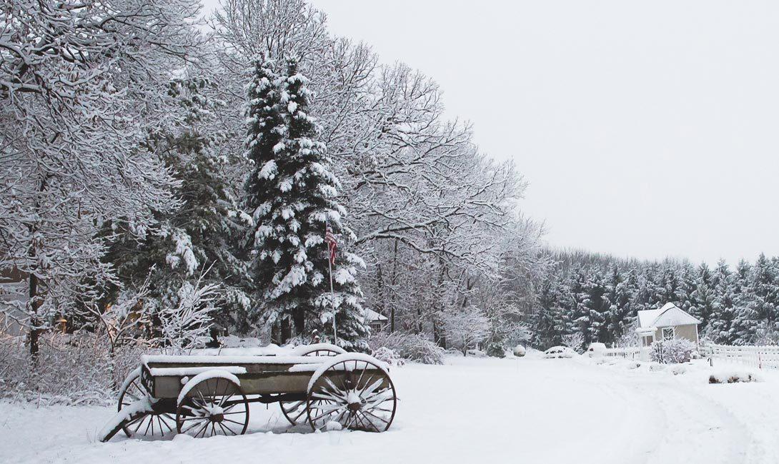 winter_pg_4