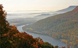 fall foliage in Chattanooga