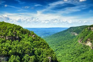 Visit Cloudland Canyon State Park, Near Chattanooga