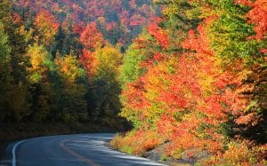 Fall foliage in White Mountains, New Hampshire
