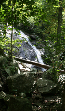 Hiking Fallingwater Cascades Loop