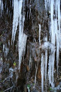 Blackwater Creek Ice sculpture
