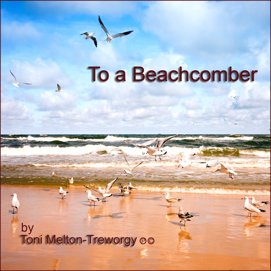 toni-music-cd-536x536-for-media-page-slider-to-a-beachcomber